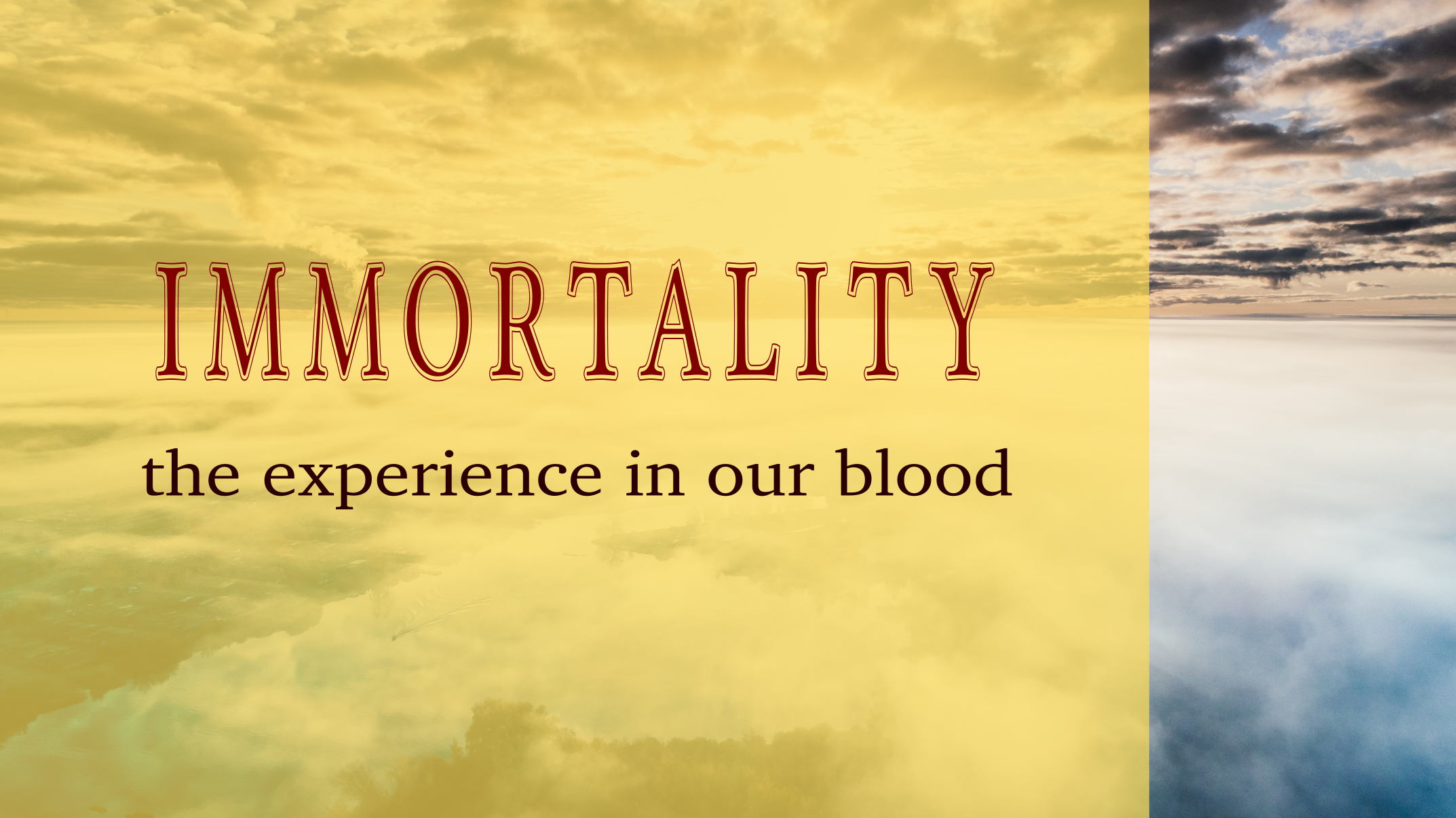 Immortality the experience in our blood